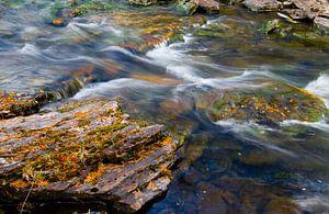 Herfstbladeren in een snelstromend riviertje van