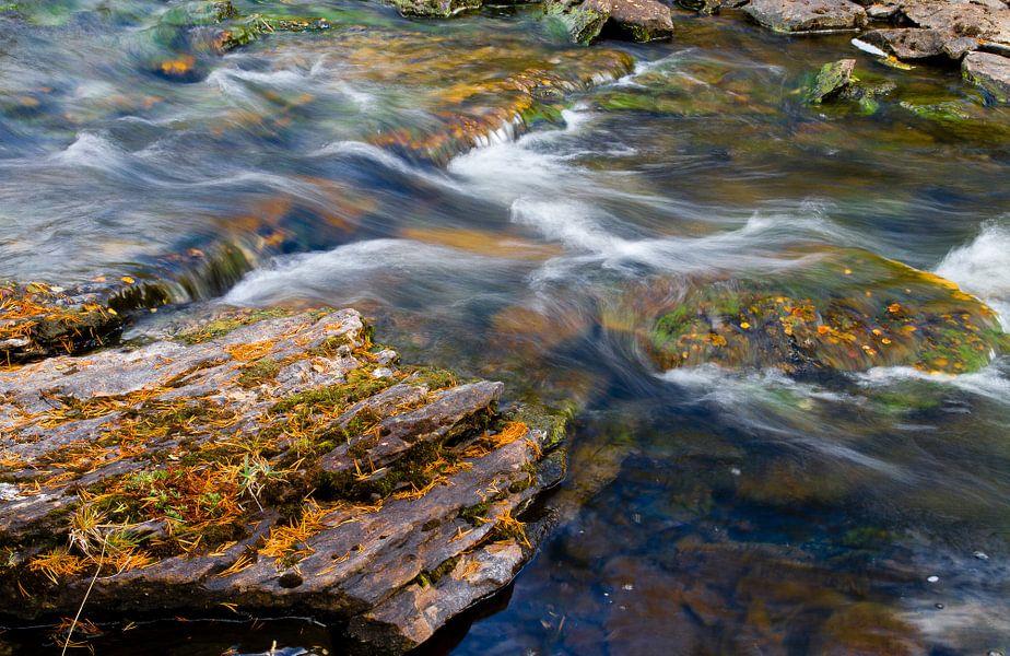 Herfstbladeren in een snelstromend riviertje van Johan Zwarthoed