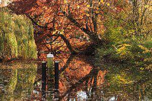 Herfst reflectie Vondelpark van