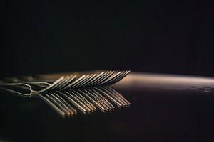 Compositie van vorken - spiegeling van Angelique van Kreij