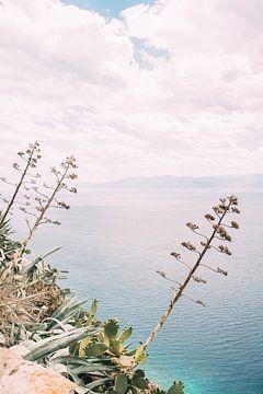 Über das Mittelmeer von Patrycja Polechonska