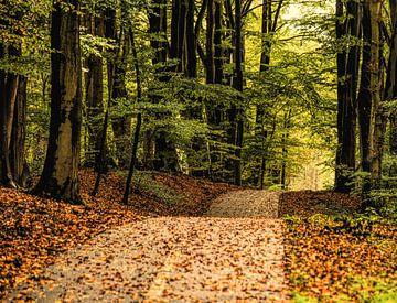 Herfst herfst wat heb je te koop von Evelien Scholten