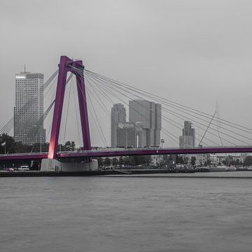 Rotterdam Willemsbrug (67155) van