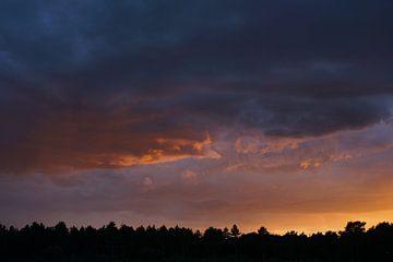 Purple sky van Herman Peters