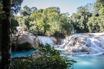 Cascadas de Agua Azul van