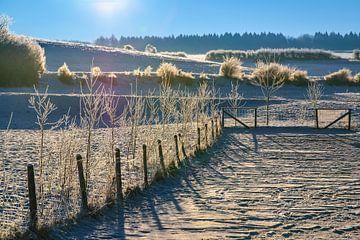 winter sur Heinz Grates