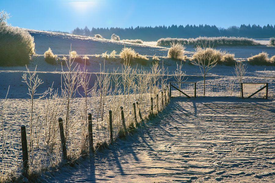 winter van Heinz Grates