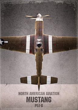 Mustang - Warbird - Flugzeug