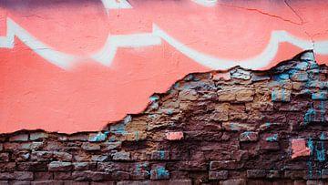 Puur muur van Johannes Schotanus