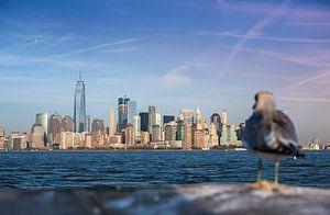 New York, Manhattan Skyline