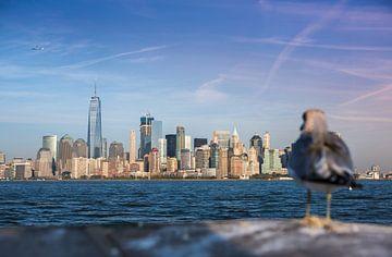 New York, Manhattan Skyline sur Maarten Egas Reparaz
