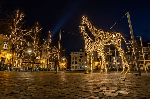 Giraffen Lichtobject in Deventer op plein Grote Kerkhof van VOSbeeld fotografie