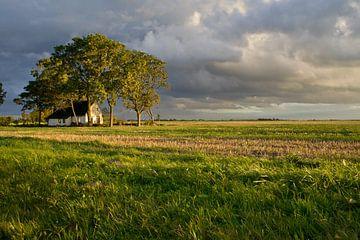 Landschap Moddergat van Marina Nieuwenhuijs