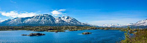 Ongerept landschap in het grensgebied tussen Canada en Alaska