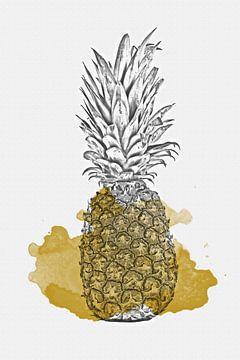 Ananas sur Felix Brönnimann