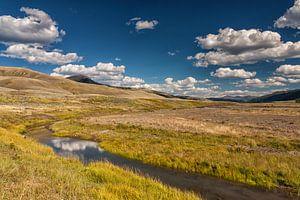 Yellowstone landschap