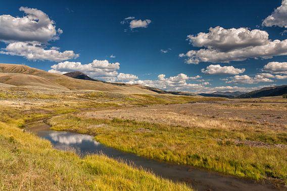 Yellowstone landschap van Ilya Korzelius