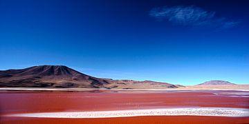 laguna colorada#2 von Stefan Havadi-Nagy