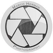 Marco Herman avatar