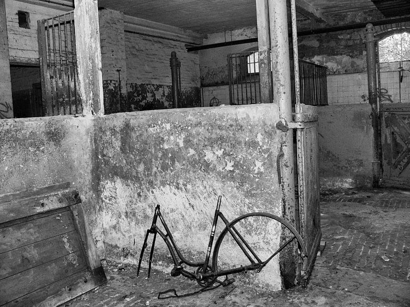 Altes rostiges Fahrrad in Verlassenem Ort (Lost Places) Poster ...