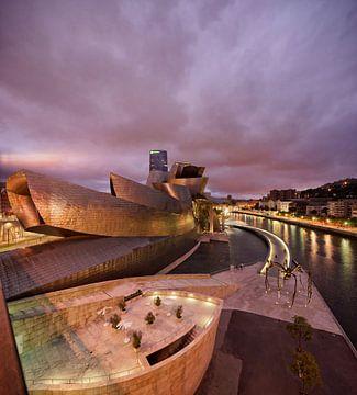 Guggenheim museum Bilboa 1 von Ronald Tilleman