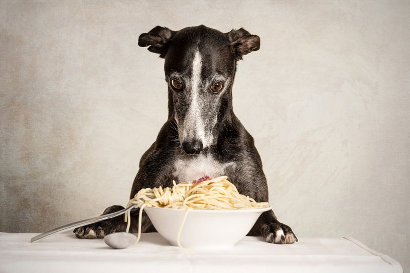 Pasta! Windhund von Nuelle Flipse