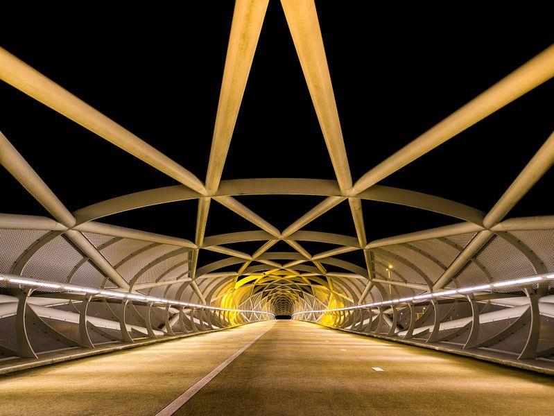 Netkous Brug, A15, Rotterdam van Art  By Dominic