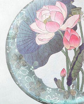 Zen IV