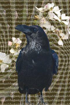 Dornenvogel von Christine Nöhmeier