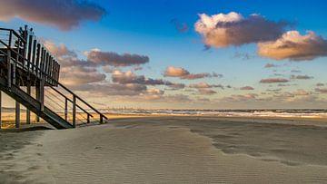 Strand Monster von Karen de Geus