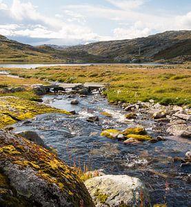 Stenen in de rivier