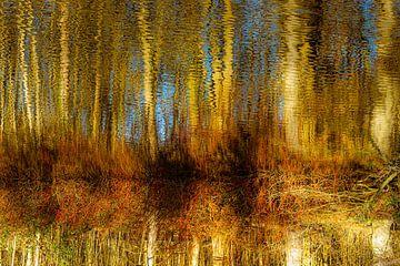Spiegeling van bomen in meer in winter abstract van Dieter Walther