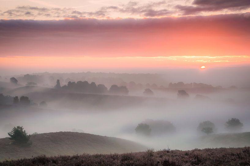Posbank in de mist van Peter Bijsterveld