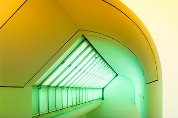 Groen-geel van Maerten Prins
