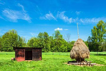 Hayshack and meadow in the Spreewald area, Germany van Rico Ködder
