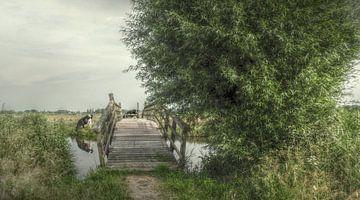 Hollandse Landschappen sur Annelies Schreuder