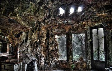 The Jungle Room von David Smets