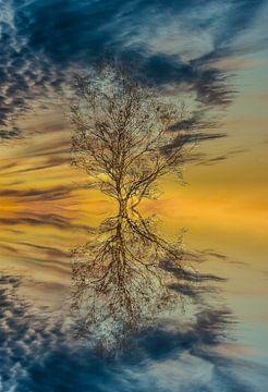 """""""Reflections"""" van Maarten Kost"""