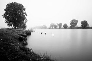 Mistige rivier