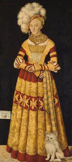 Catherine of Mecklenburg, Lucas Cranach de Oude