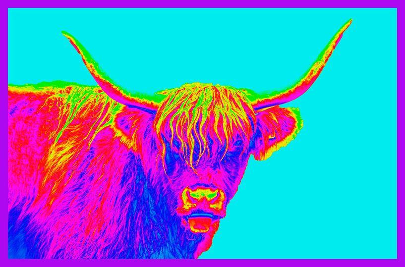 Kleurig portret van een Schotse Hooglander van Ans Bastiaanssen
