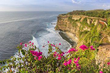 Rosa Blumen an der Küste von Ulu Watu auf Bali von Marc Venema