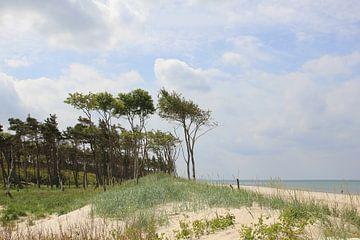 Am Weststrand van Ostsee Bilder