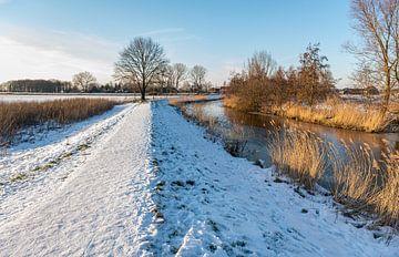 Besneeuwd pad in Nederlands polderlandschap van Ruud Morijn