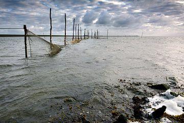 Fuik aan zeedijk Texel van Ronald Timmer