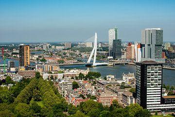 Erasmusbrug Rotterdam vanaf de Euromast. van Brian Morgan