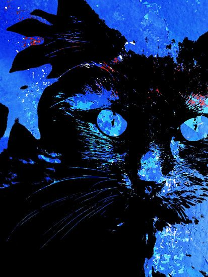 Kattenkunst - Storm 3 van MoArt (Maurice Heuts)