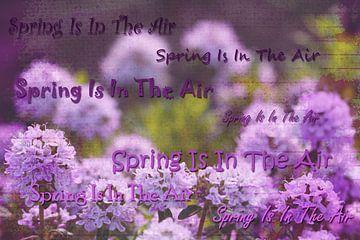 Spring is in the air van Kiezel Fotografie