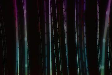 licht  van Jasper Vierbergen