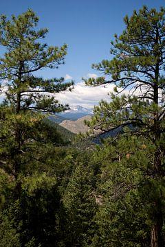 Rocky Mountains van Charlotte Meindersma